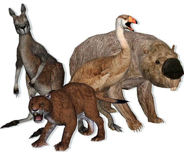a research on mega fauna extinction in australia